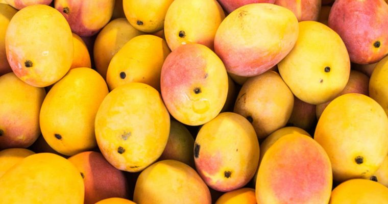 Mango: A Summer Fruit